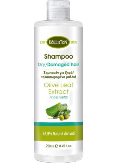 Hair Shampoo for dry and damaged hair with aloe 250ml